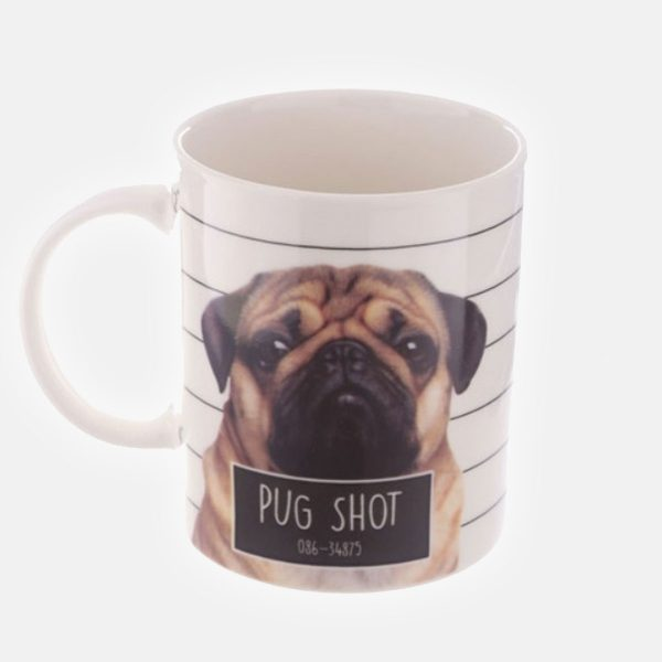 Jack Evans Pug Shot Bone China Mug (Fawn)